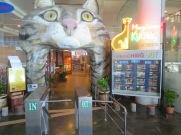Kuching - city of cats